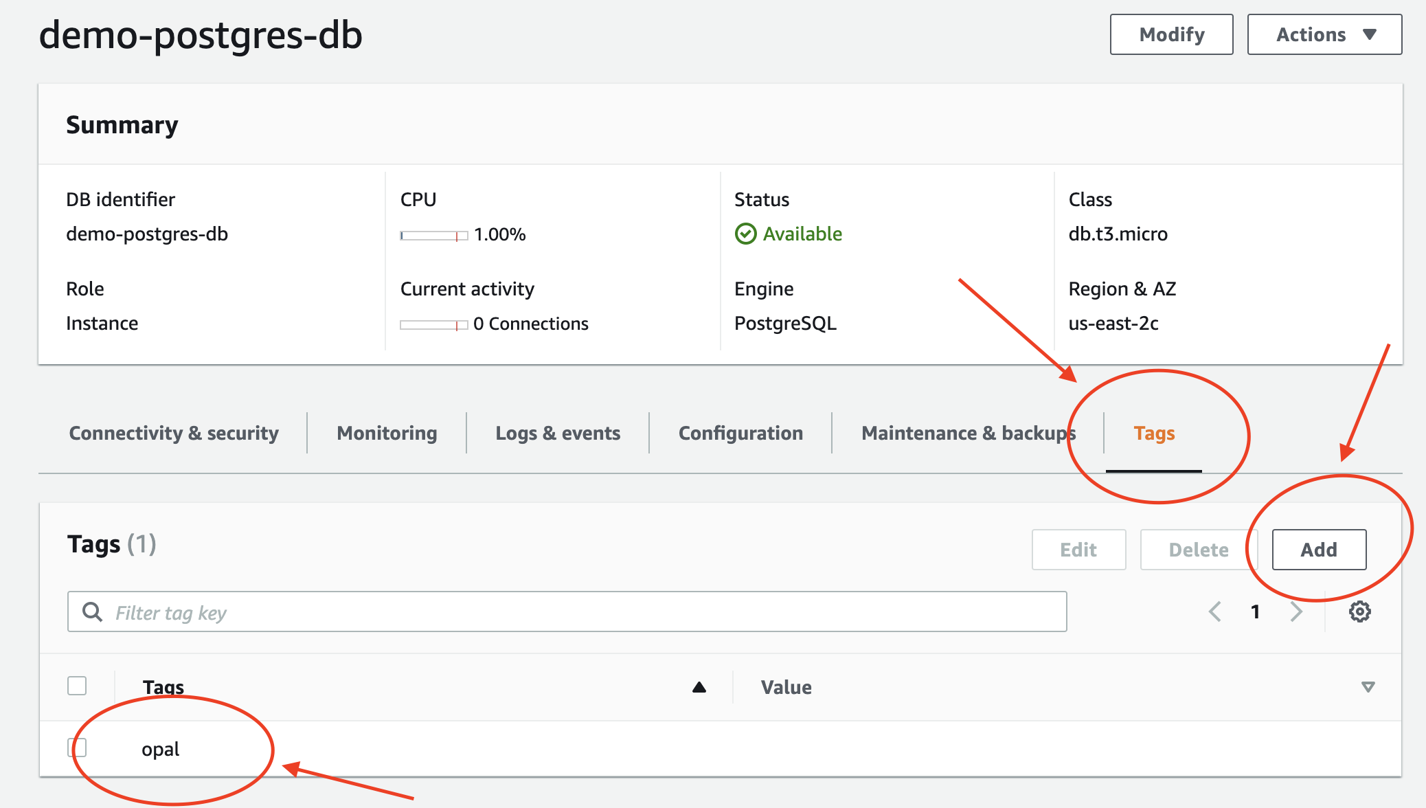 Tagging an RDS database with `opal` in the AWS Console.